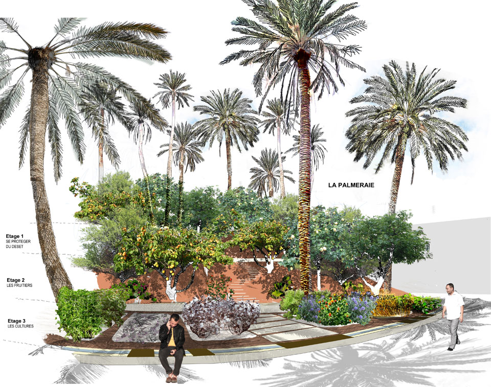 Sativa paysage jardin p dagogique du lyc e fran ais de tunis for Jardines oasis valdetorres