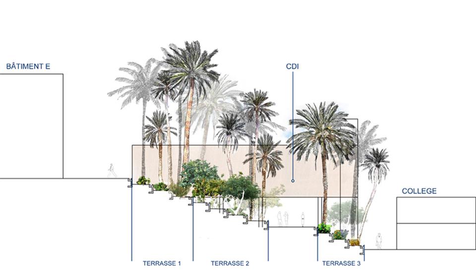 Sativa paysage jardin p dagogique du lyc e fran ais de tunis for Jardin 2000 tunisie